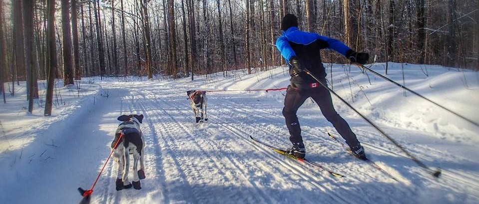 Join Mush Larose and enjoy our trails